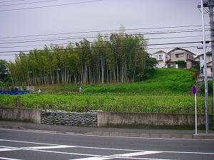 横浜市戸塚区:草刈施工前
