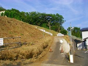 藤沢市花の木:伐採施工後